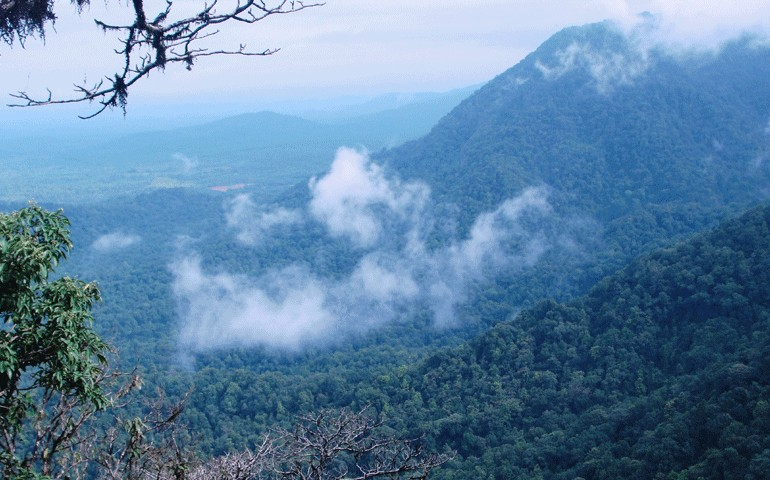 Agumbe-Hill-Stations-Near-Bangalore-within-400-kms