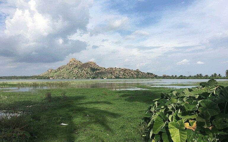 Pandavapura_lake_with_Kunti_betta_hill_view