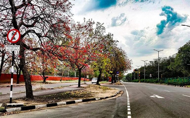 Chandigarh Street